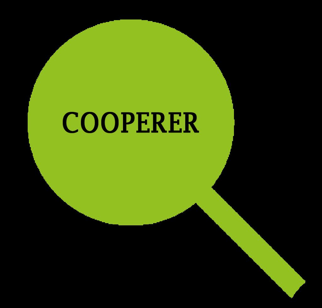 cooperer espace employeur mlcoudongapeau